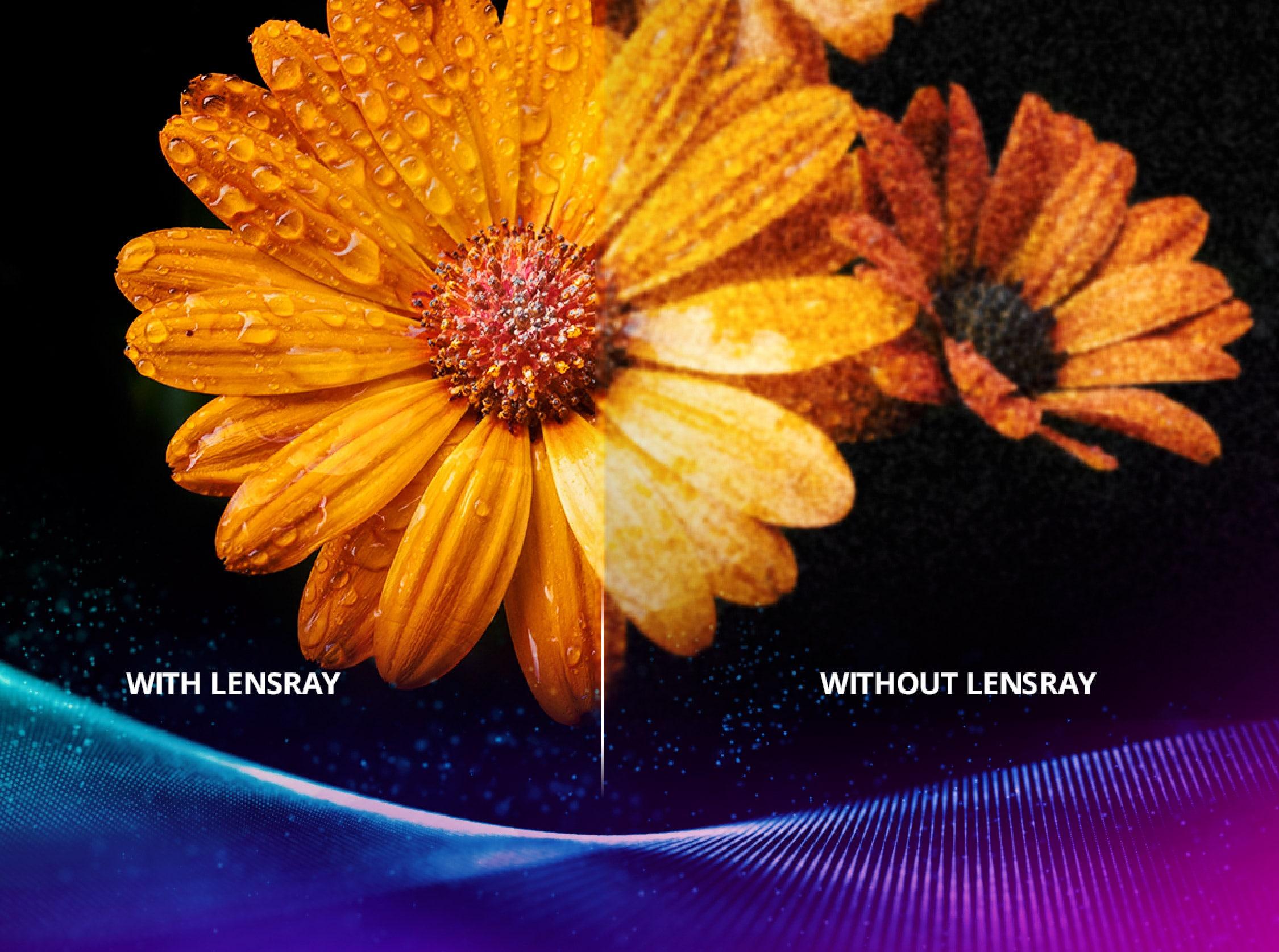 Lensray Technology